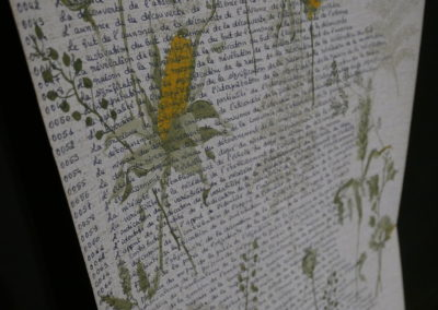 Compléments de noms - Circa - 1975 Support de lecture, rouleau papier peint manuscrit | art-cade*