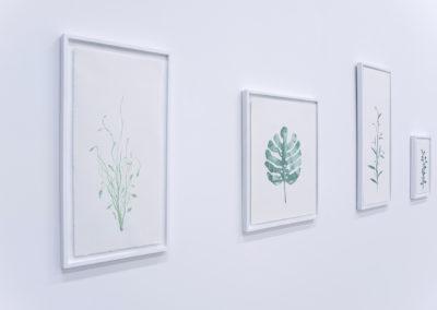 Quentin Dupuy, Herbarium, 2019, chewing gum sur papier Arches © Quentin Dupuy | art-cade*